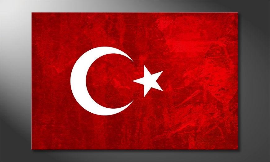Art Print Turkey