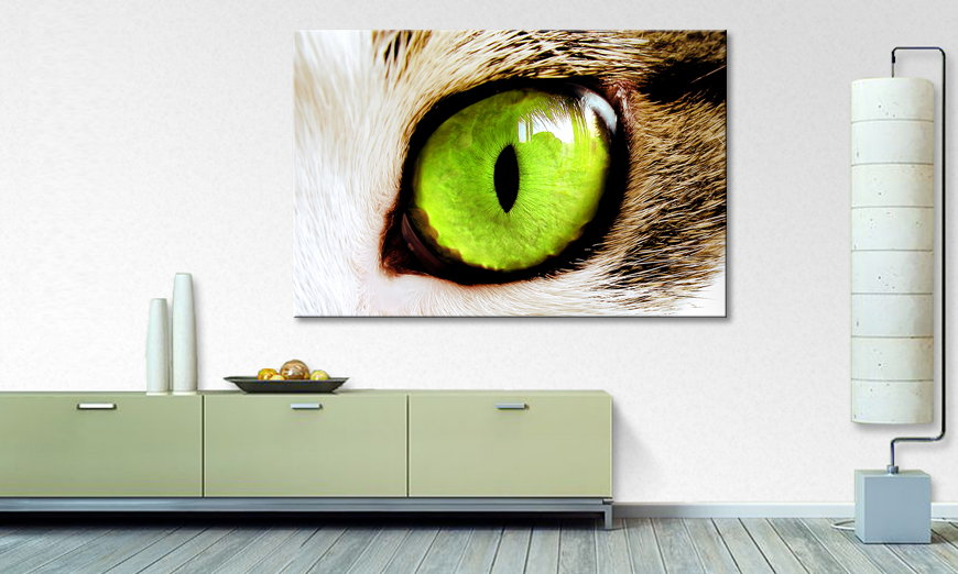 Art print Cats Eye