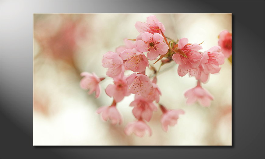 Art-print-Cherry-Blossoms