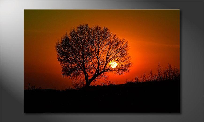 Art print Red Sunset