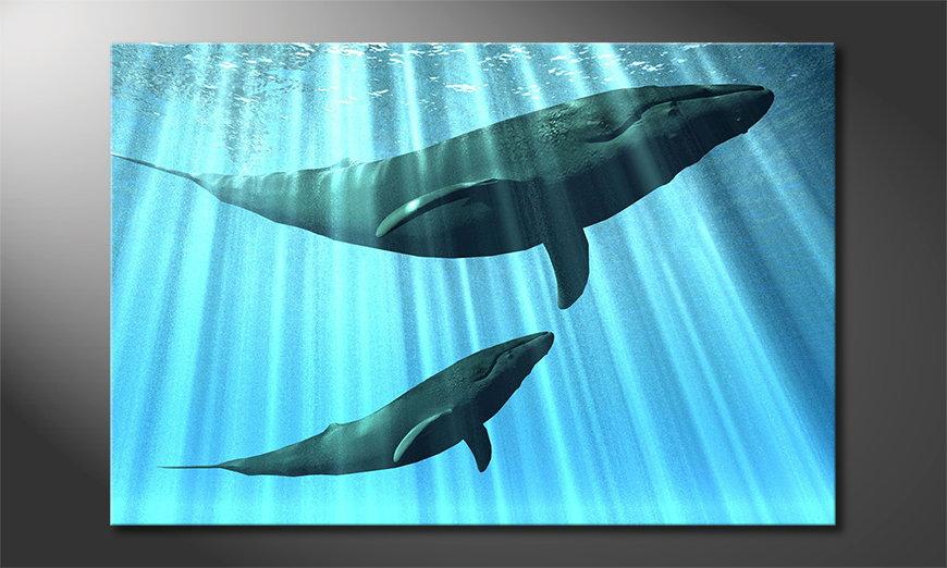 Blue canvas print Whales