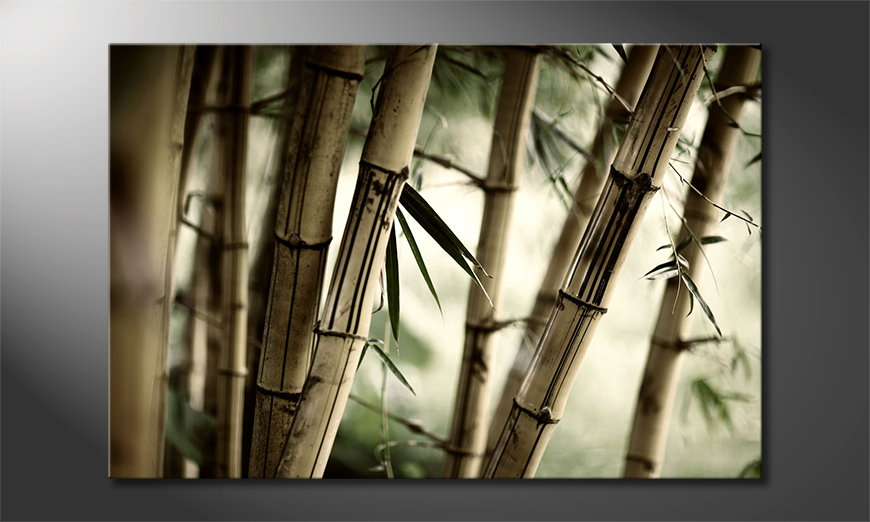 Canvas-Bamboo-Forest