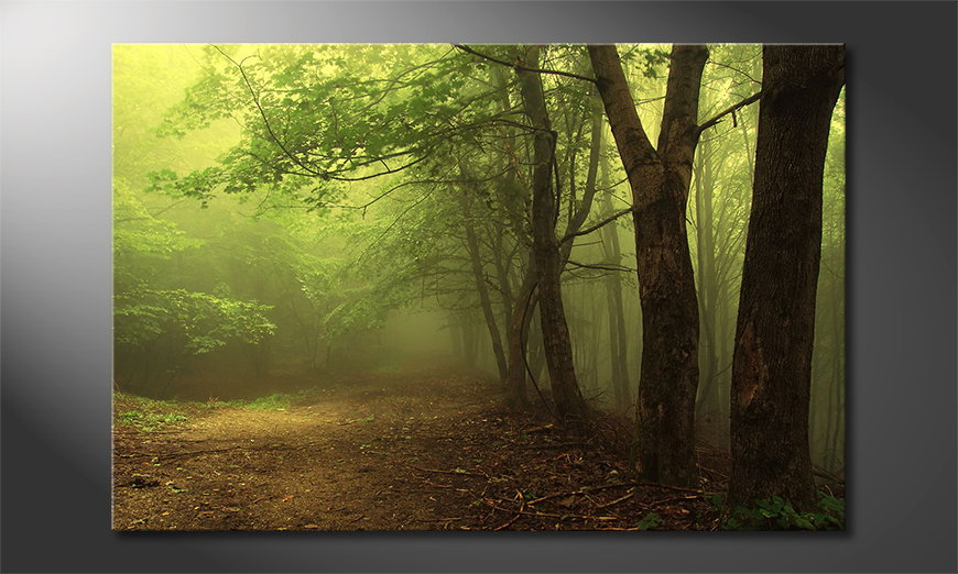 Canvas print Green Forest
