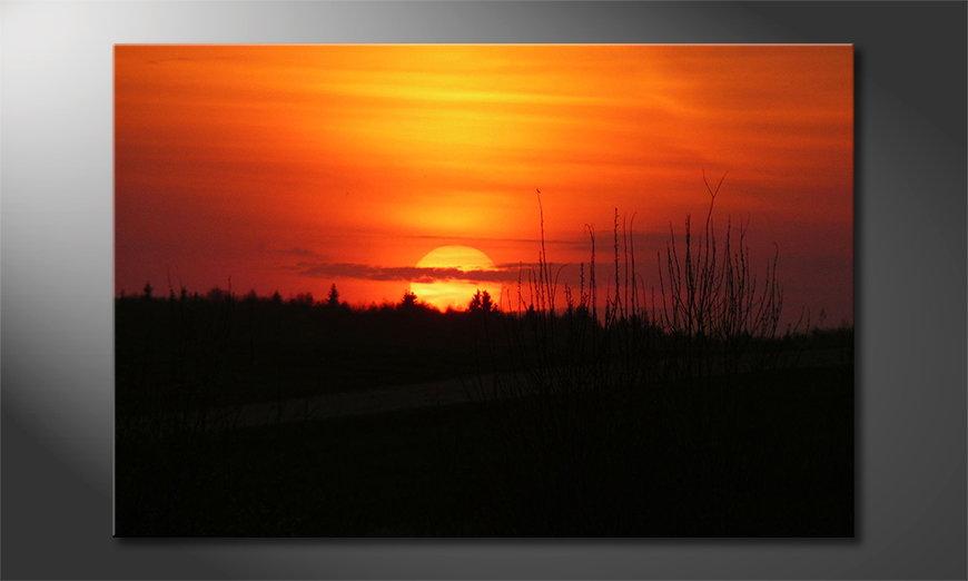 Canvas print Sunset Sky