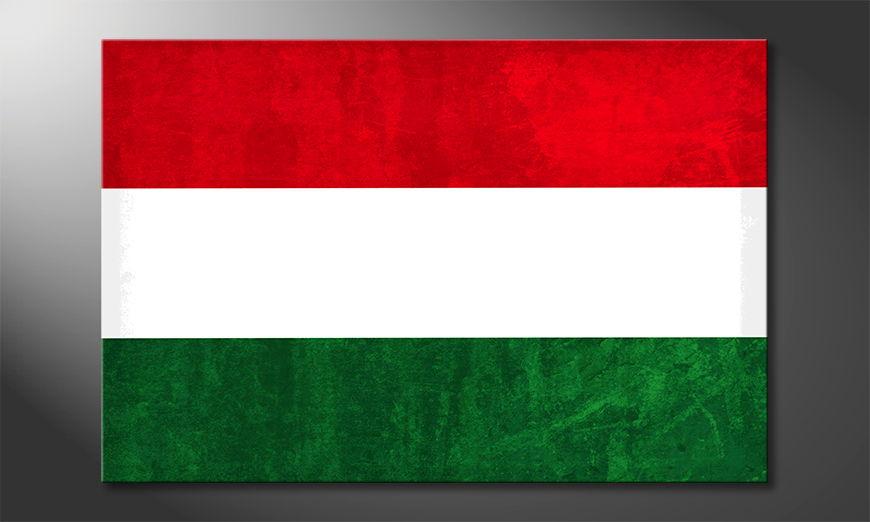 Modern Canvas print Hungary