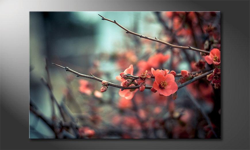 Modern art print Red Blossoms