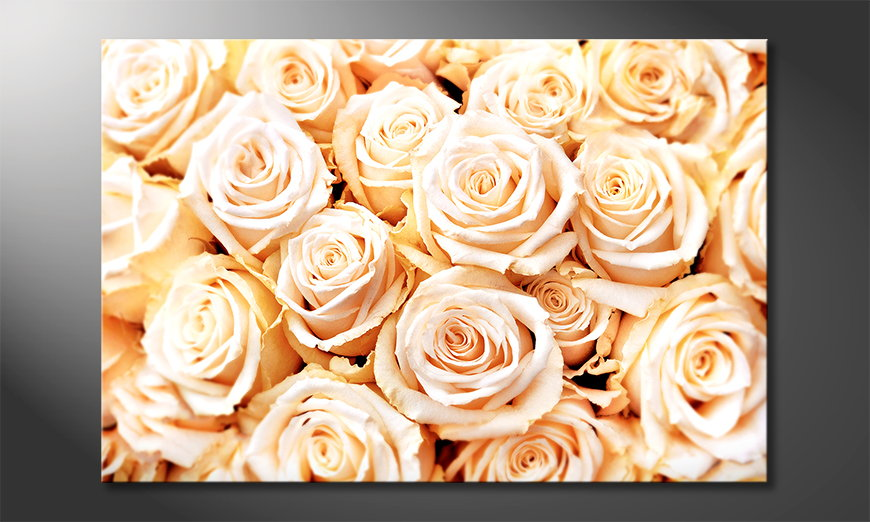 Modern print Creamy Roses