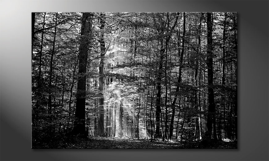 The nice painting Into The Forest