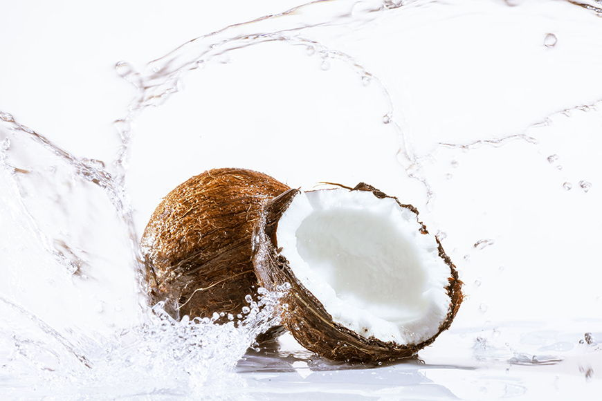 Photo-wallpaper Coconut from 120x80cm