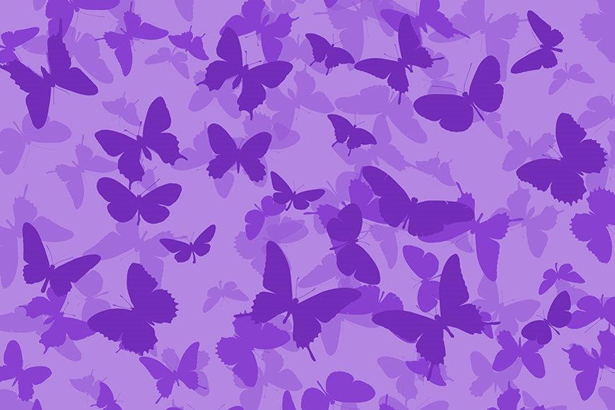 Wallpaper Butterflies from 120x80cm