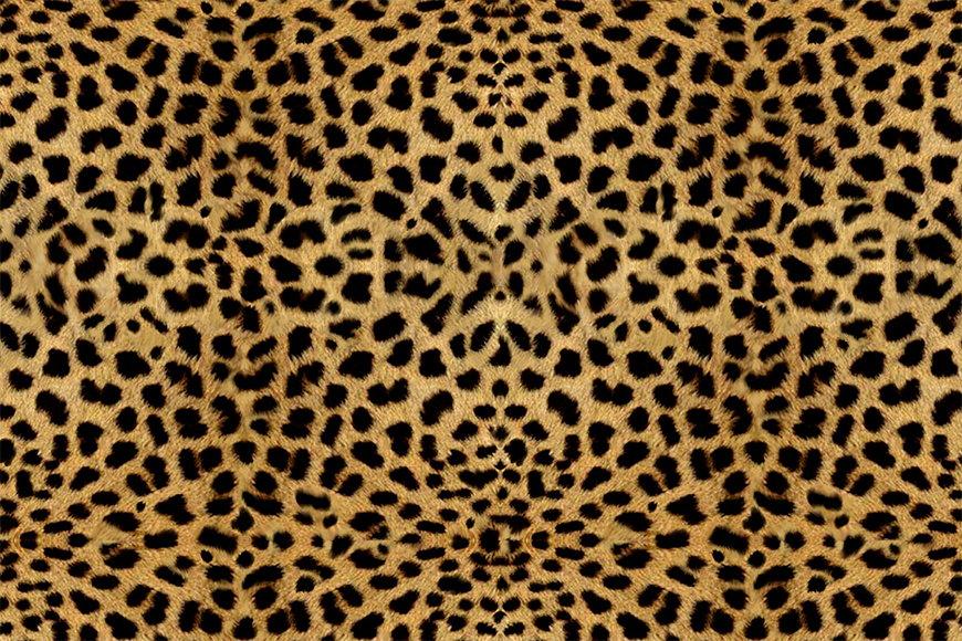 Wallpaper Lepard from 120x80cm