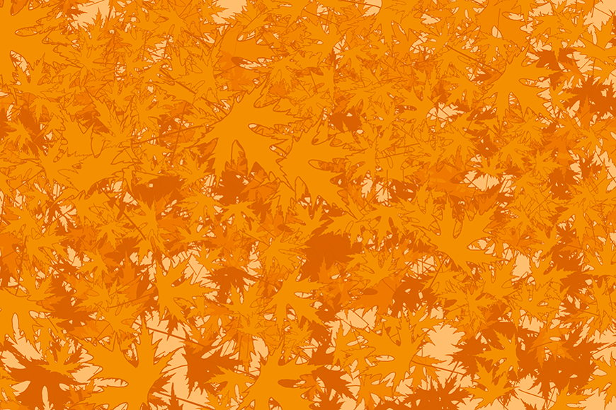 Wallpaper Maple from 120x80cm